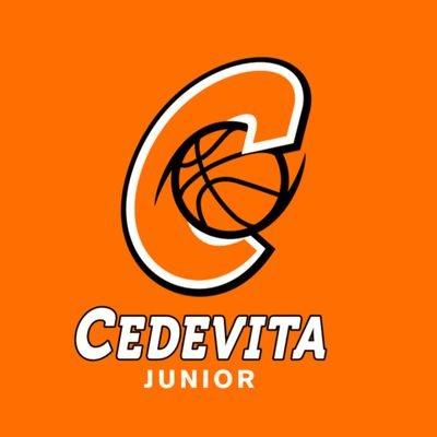 Cedevita Junior - Agrodalm